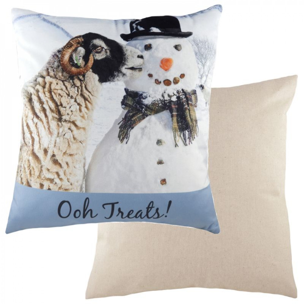 Cute 'Ooh Treats'  Cushion With Snowman